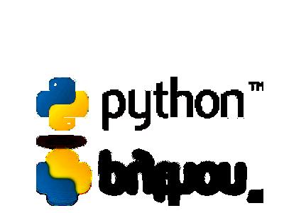 python logiciel logo 10