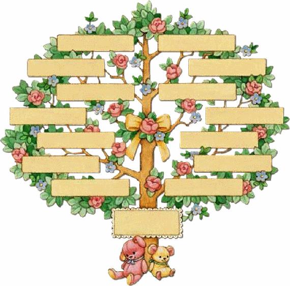 arbre genealogique descendance 05