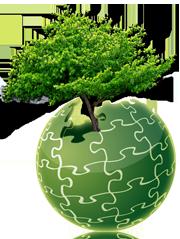 arbre genealogique descendance 02
