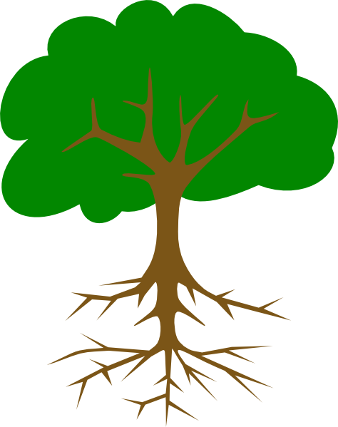 arbre genealogique descendance 03