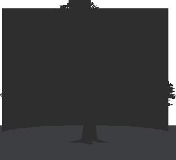 arbre genealogique descendance 00