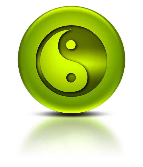 tai chu yin yang 15