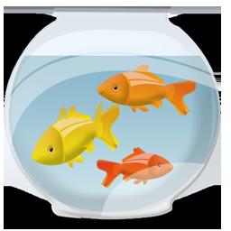 boule aquarium 8