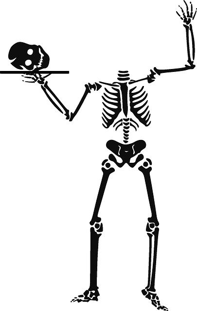 squelette 5