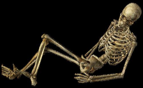 squelette 0