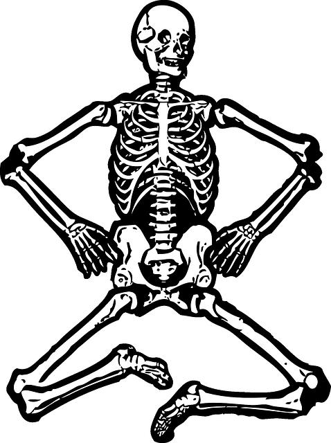 squelette 7