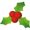 christmas mistletoe houx