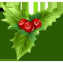 mistletoe houx