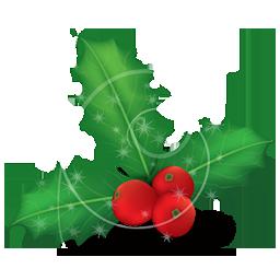 mistletoe 2 houx