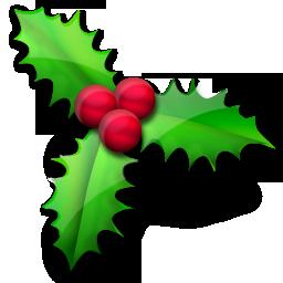 christmas christmas holly houx