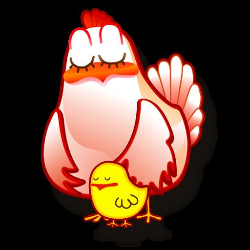 gallina animaux